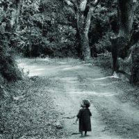 """""""LA MEMOIRE DES ARBRES"""" : FABRICE MURGIA AU THEÂTRE NATIONAL"""