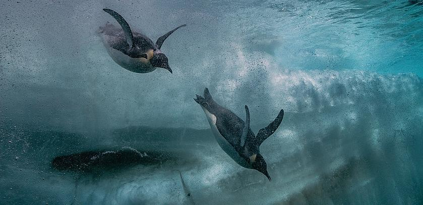 Antarctica-slide-03-FR